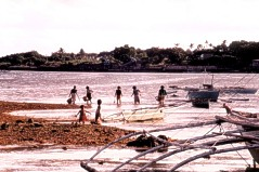 Natives collecting shells on low tide.