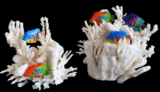 Ocean Coral Creations - Click For Larger View