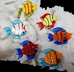 Assorted Glass Fish Magnets - Click For Larger View