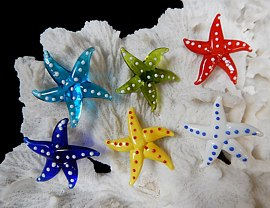 Assorted Glass Starfish Magnets - Click For Larger View