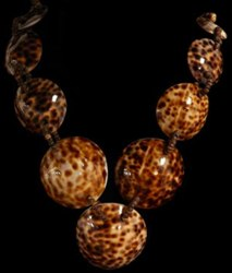 Tiger Cowrie Necklace - Click For Larger View